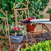 garden-4325782_1280
