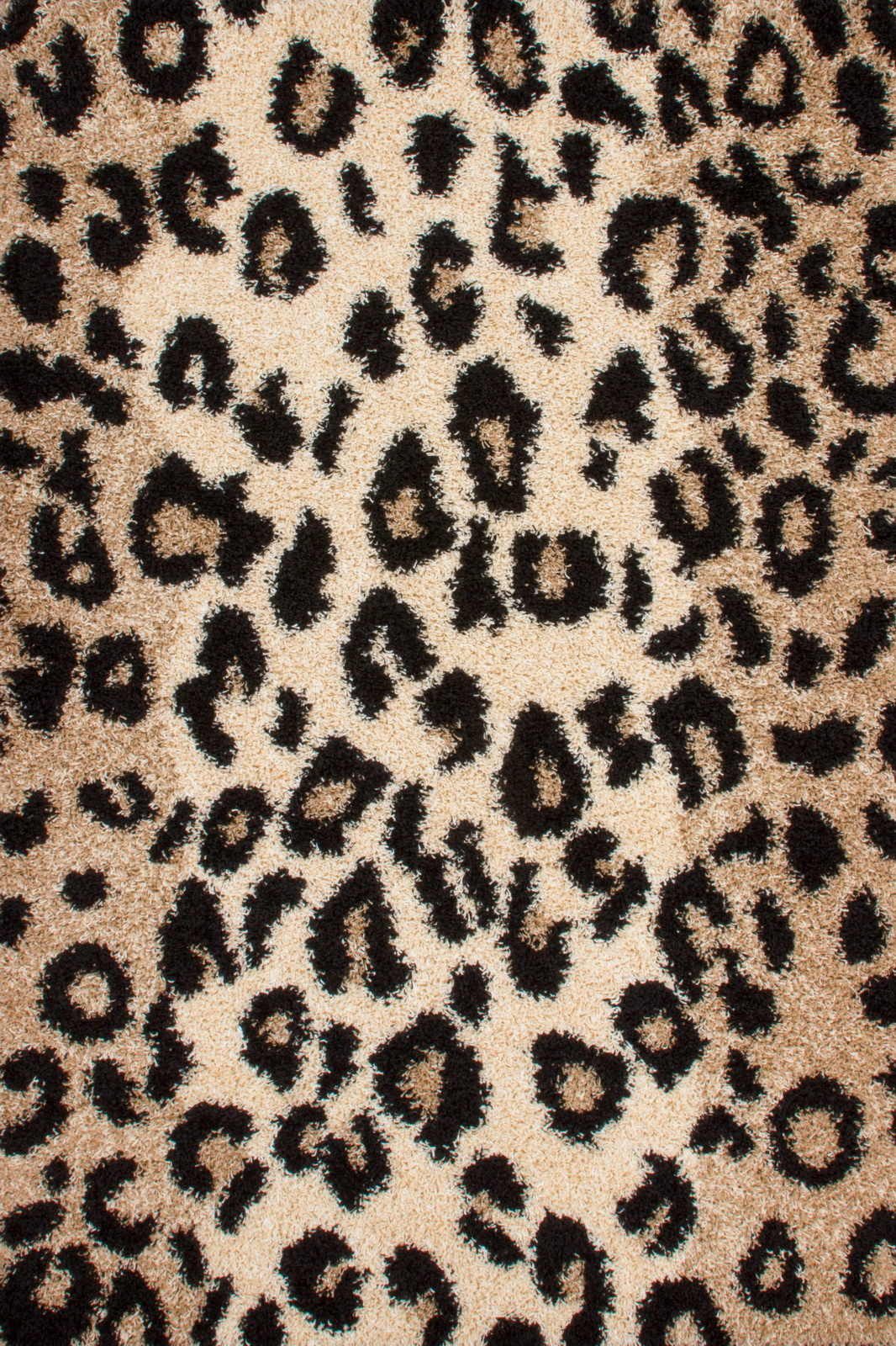 Kusový koberec - Lalee - Joy 113 Leo